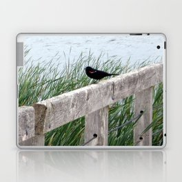 Blackbird on Boardwalk | Bird and Water Landscape | Canada Laptop & iPad Skin