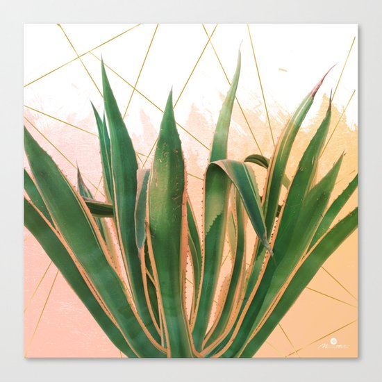 Cactus with geometric Canvas Print