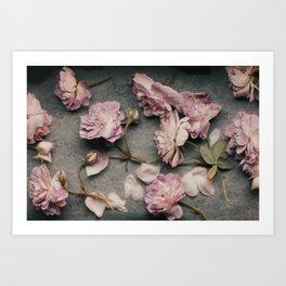 Dusty Pink Roses Art Print