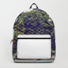 Temptation exemption through useful action noesis. Backpack