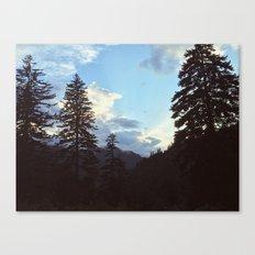 Newfound Gap Canvas Print