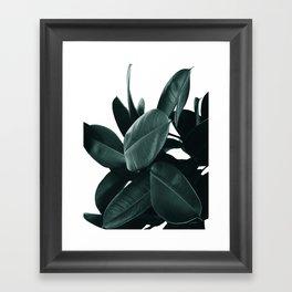 Dark Green Rubber Plant Framed Art Print