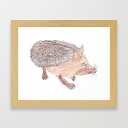 Desert Hedgehog Framed Art Print