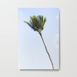 Palm tree party of one Metal Print
