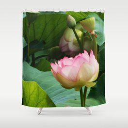 The Lotus Shower Curtain