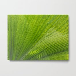 Tropical Abstract Metal Print