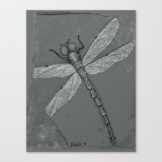 Petrified Dragonfly Canvas Print
