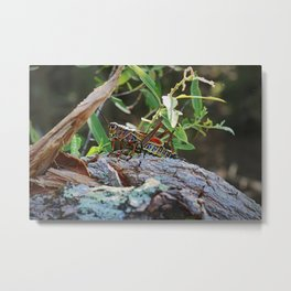 A Lubber in the Slough III Metal Print