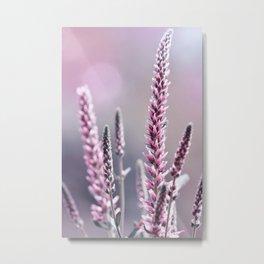 Summer flowers 300 Metal Print