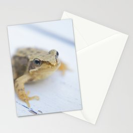 Little Frog Stationery Cards