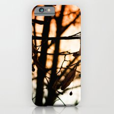 Late Autumn Chill iPhone 6s Slim Case