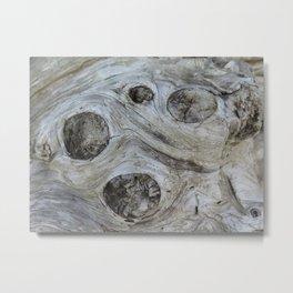 Beach Log 39 Metal Print