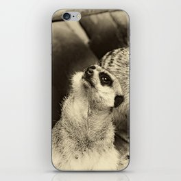 What happens? iPhone Skin