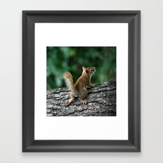 Young Red Framed Art Print