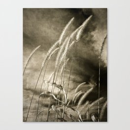 ecology {no.6 Canvas Print