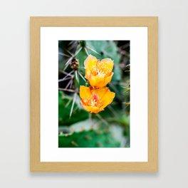 Every Desert Blooms Framed Art Print