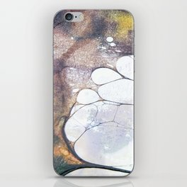 Fossils 45 iPhone Skin