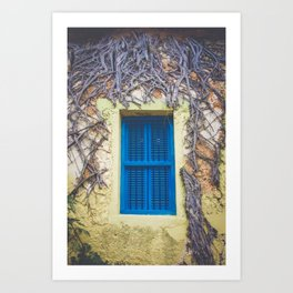 blue shutter window in yellow building with creeping vines Art Print