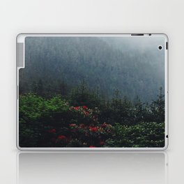 Ketchikan Mountains Laptop & iPad Skin