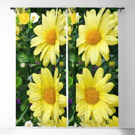 Pretty Daisies Blackout Curtain