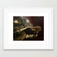 tortoise Framed Art Prints featuring Tortoise by Minx Paints