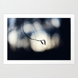 Winter Breaks 8 Art Print