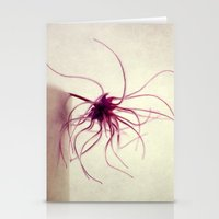spider Stationery Cards featuring spider by Claudia Drossert