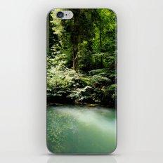 Luxembourg iPhone & iPod Skin
