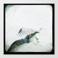 wings Canvas Prints featuring Wings by Bella Blue Photography
