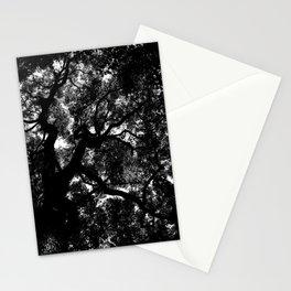 Camphor Canopy Stationery Cards