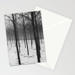 Trees in Fog Stationery Cards