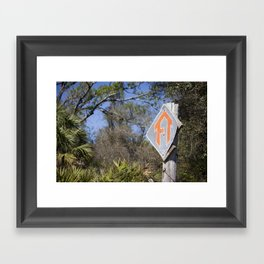 Florida Trail in Winter (unrecognizable weather in Florida) Framed Art Print