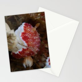 Red bunny nudibranch Stationery Cards