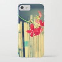 books iPhone & iPod Cases featuring books by Eva Lesko