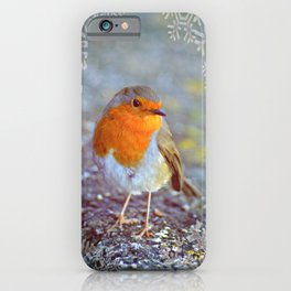 Robin Christmas iPhone Case