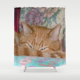 Plotting Shower Curtain