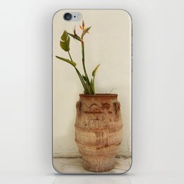 Bird of Paradise Plant iPhone Skin