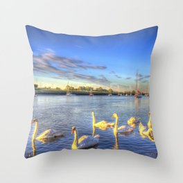 Sunset Swans Throw Pillow