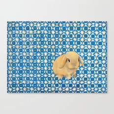 Charlie the Rabbit Canvas Print