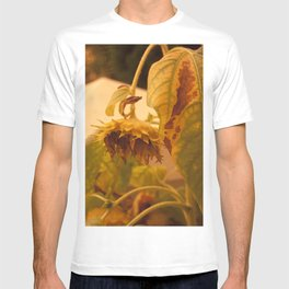 The Sun has Set and tomorrow, God willing, it will rise again [SUNFLOWER] [WILTING] [YELLOW SKY]  T-shirt