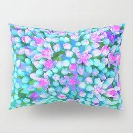 Blue and Hot Pink Succulent Sedum Flowers Detail Pillow Sham