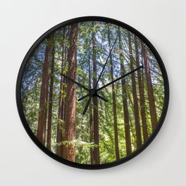 Redwood Grove Wall Clock