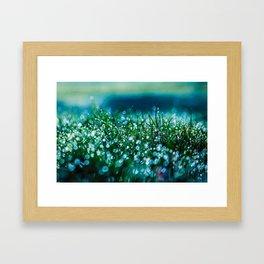 Spring Morning 2 Framed Art Print