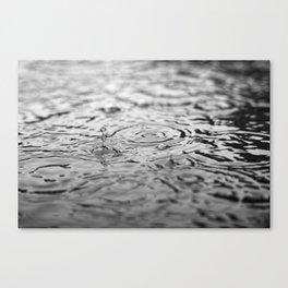 Black and white raindrops Canvas Print