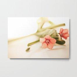 Beautiful origanum flower Metal Print