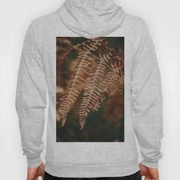 The perfection of fern's leaves Hoody