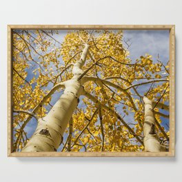 Aspens Above in Autumn Serving Tray