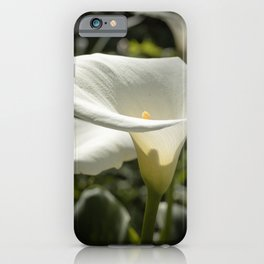 The Glorious Return iPhone Case