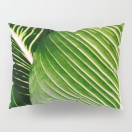 Big Leaves - Tropical Nature Photography Pillow Sham