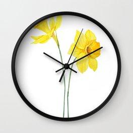 two botanical yellow daffodils watercolor Wall Clock